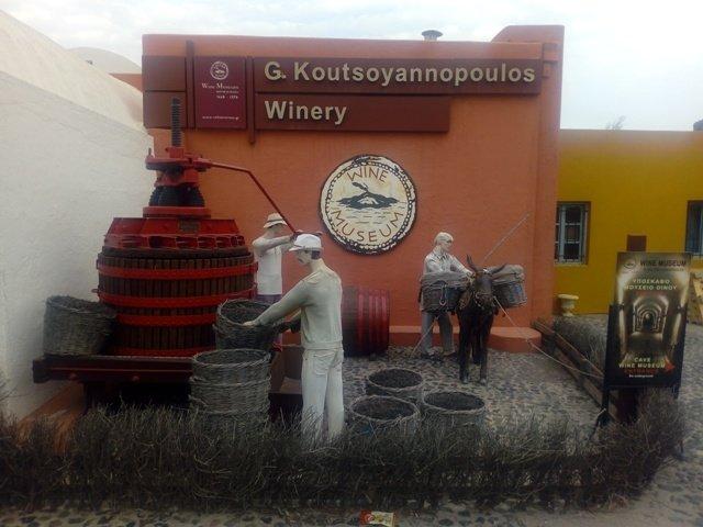 Wine Museun
